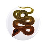 snake 3.5