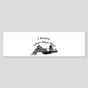 I know what boys like Bumper Sticker