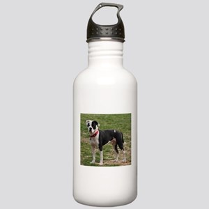 Bully Dogs 2 Stainless Water Bottle 1.0L