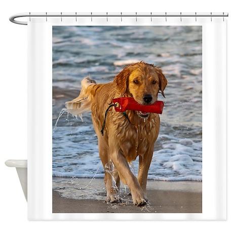 Golden Retriever 6 Shower Curtain