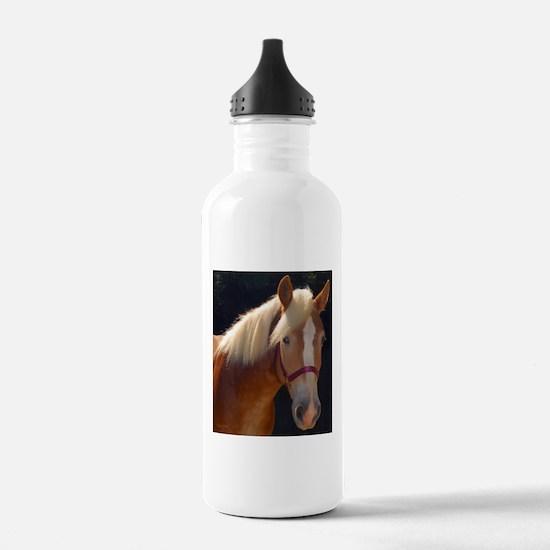 Sunlit Horse Water Bottle