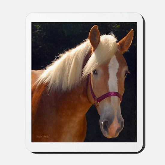 Sunlit Horse Mousepad