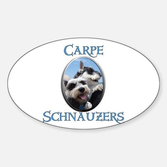 Carpe Schnauzers Sticker (Oval)