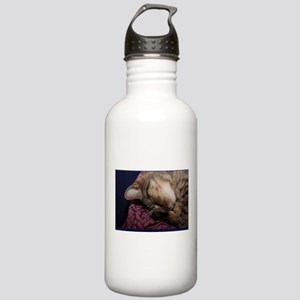 Cozy Nap Stainless Water Bottle 1.0L