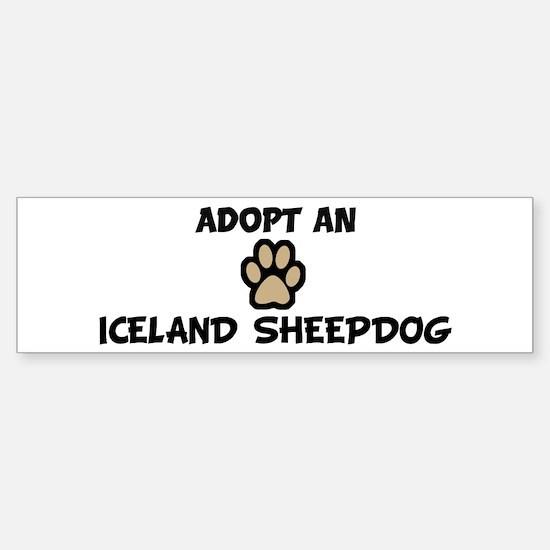 Adopt an ICELAND SHEEPDOG Bumper Bumper Bumper Sticker