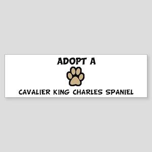 Adopt a CAVALIER KING CHARLES Bumper Sticker