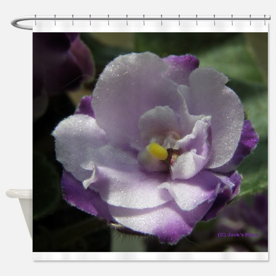 African Violet #02 Shower Curtain