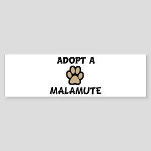Adopt a MALAMUTE Bumper Sticker