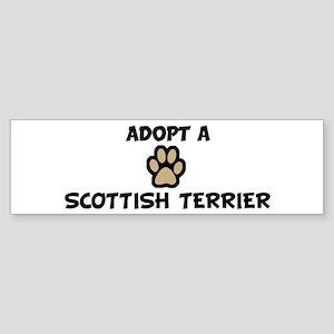 Adopt a SCOTTISH TERRIER Bumper Sticker