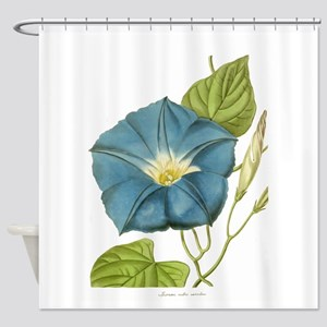 Blue Morning Glory Print Shower Curtain
