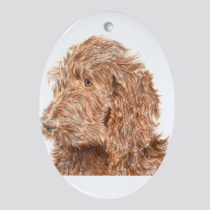 Chocolate Labradoodle 5 Ornament (Oval)