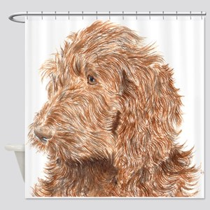 Chocolate Labradoodle 5 Shower Curtain