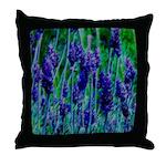 Sonoma Lavendar As Art Throw Pillows