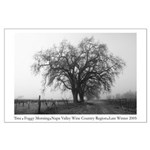 Napa Valley Tree in Winter Vineyard Large Poster