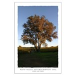 Napa Trees - Harvest large poster