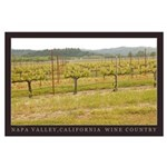 Red French Poppies in Vineyard Large Poster