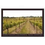 Napa Valley Wine Country Lg Posters