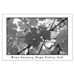 black + white wine country turning leaf lg poster