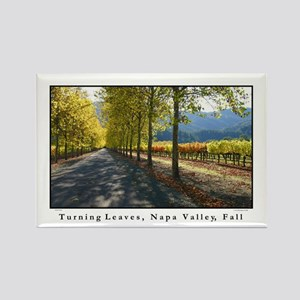 Tree Lined Road, Vineyard Turning Leaf Magnet