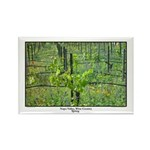 Wildflowers, Spring Vines Rectangle Magnet (100 pa