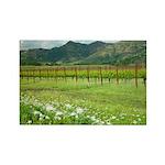 Wildflowers Silverado Trail, Napa Magnet