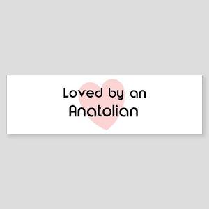 Loved by an Anatolian Bumper Sticker