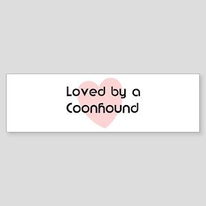 Loved by a Coonhound Bumper Sticker