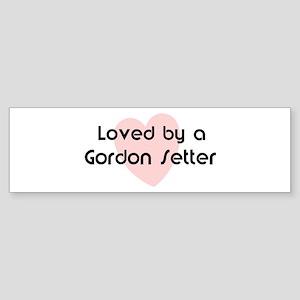 Loved by a Gordon Setter Bumper Sticker