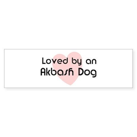 Loved by an Akbash Dog Bumper Sticker
