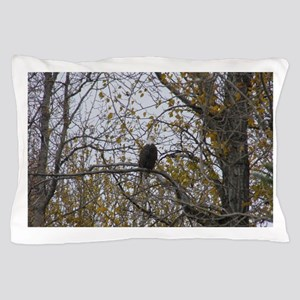Bald Eagle #01 Pillow Case