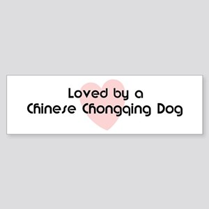Loved by a Chinese Chongqing Bumper Sticker