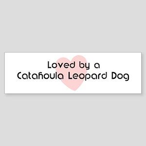 Loved by a Catahoula Leopard Bumper Sticker