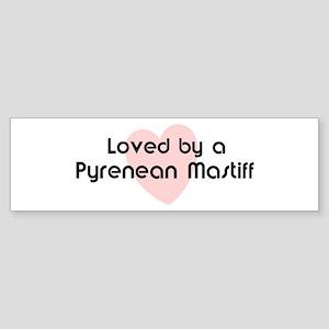 Loved by a Pyrenean Mastiff Bumper Sticker