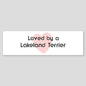 Loved by a Lakeland Terrier Bumper Sticker