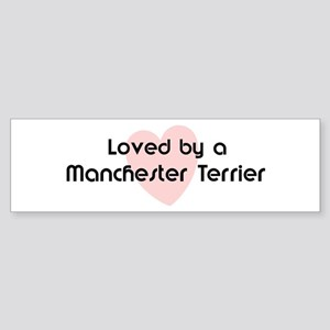 Loved by a Manchester Terrier Bumper Sticker