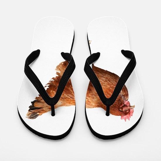 Red Hen Flip Flops
