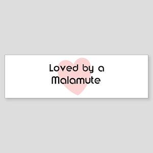 Loved by a Malamute Bumper Sticker