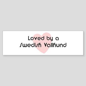 Loved by a Swedish Vallhund Bumper Sticker
