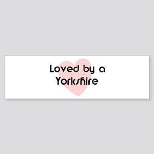 Loved by a Yorkshire Bumper Sticker