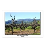 Napa Valley Winter Postcards (package of 8)