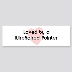 Loved by a Wirehaired Pointer Bumper Sticker