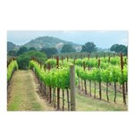 Young Spring Vineyard Postcards (Package of 8)