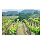 Spring Vineyard Postcards (Package of 8)
