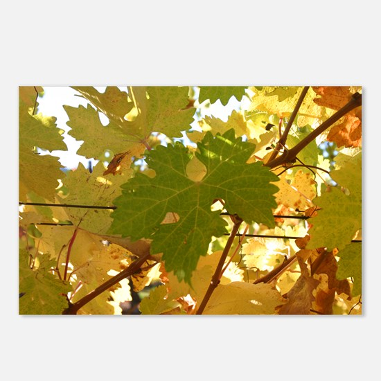 Turning Leaf Postcards (Package of 8)