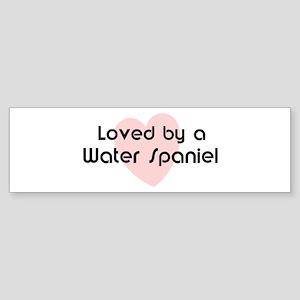 Loved by a Water Spaniel Bumper Sticker