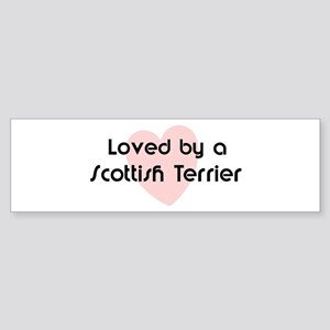 Loved by a Scottish Terrier Bumper Sticker