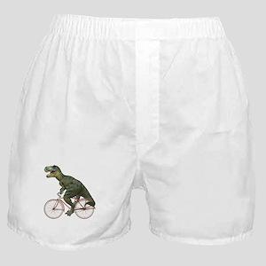 Cycling Tyrannosaurus Rex Boxer Shorts