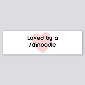 Loved by a Schnoodle Bumper Sticker