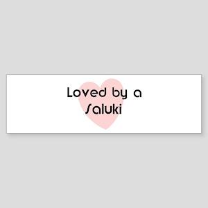 Loved by a Saluki Bumper Sticker