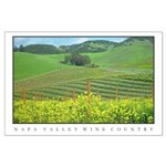 Mustard Covered Hills Large Poster